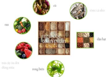 Nguyên tắc lựa chọn thực phẩm Âm Dương theo thực dưỡng Ohsawa