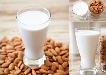 Hướng dẫn làm sữa lúa mạch, hạnh nhân thơm ngon, bổ dưỡng